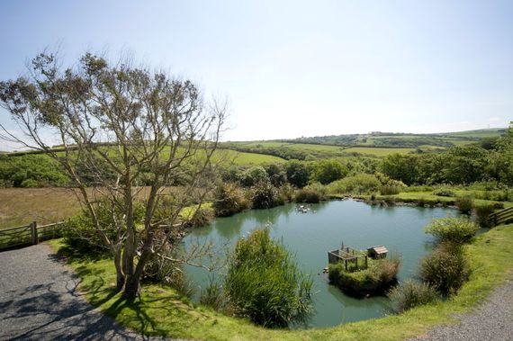 Duck pond and views over to our village of Kilkhampton