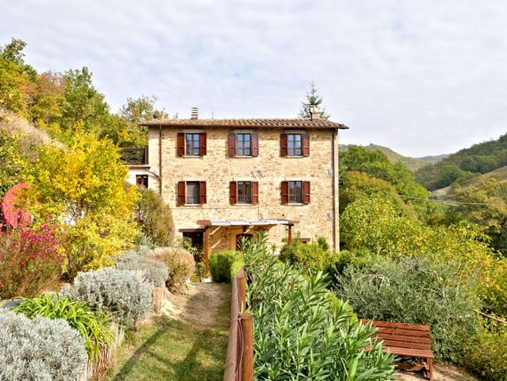 Santa Chiara from the olive grove