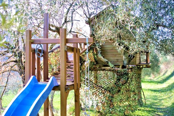Tree fort in the olive grove