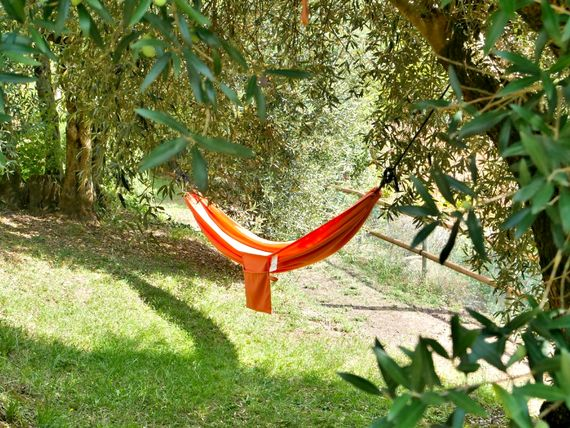 Relax in a hammock