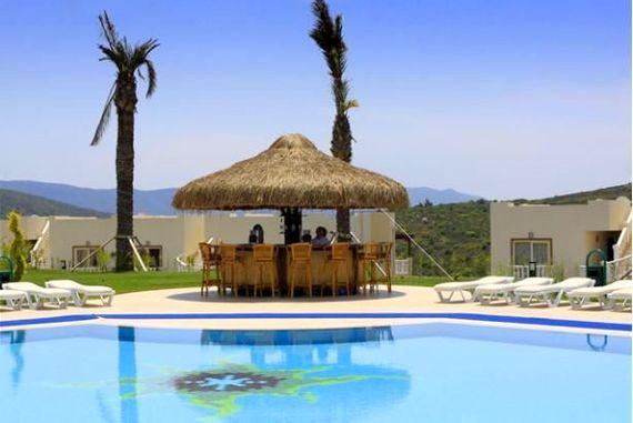 Pool Bar Near Villa