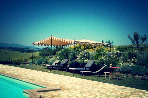 Sunflower Springs - Ornellaia Image 4