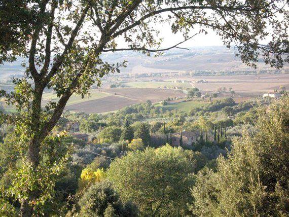 Tartagli - Brunello Image 16
