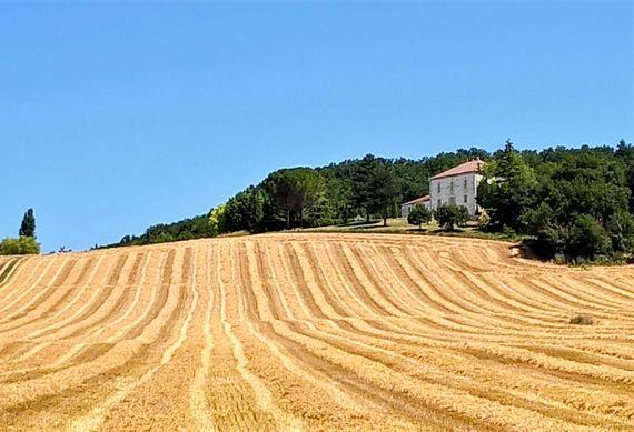 Run wild through golden wheat fields that back onto the gardens