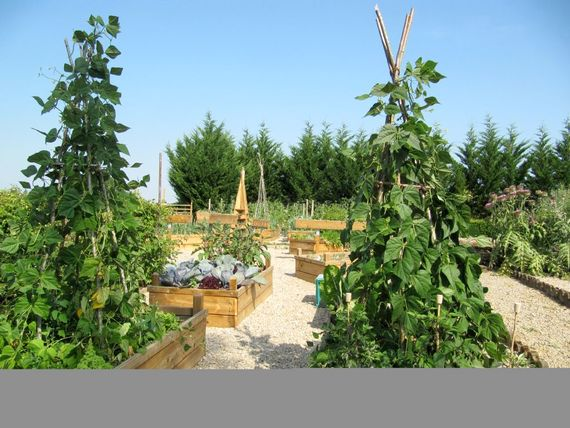 Wander the veg. garden and have a basket filled with whatever's in season, all organically grown.