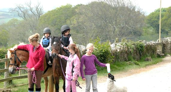 Horse Riding available on site