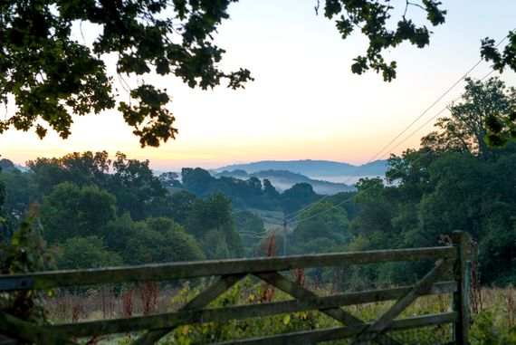 Hogchester at Dawn