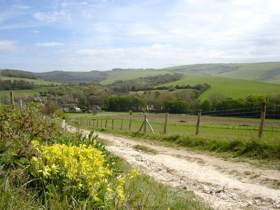 Panoramic views over Jevington on a beautiful walk into Friston Forest. 10 mins drive from Lamb's Knees