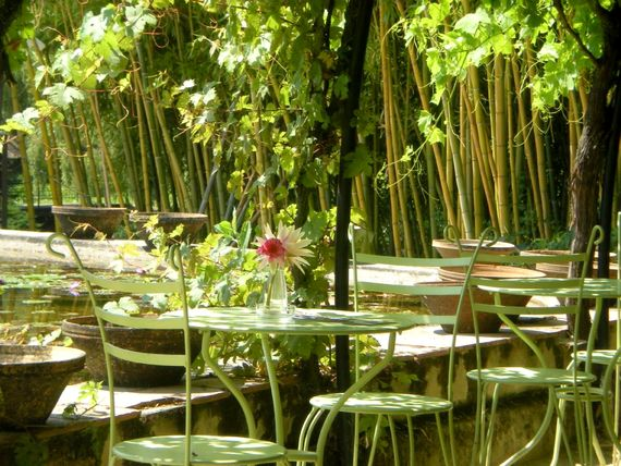 Local water lily gardens with café restaurant
