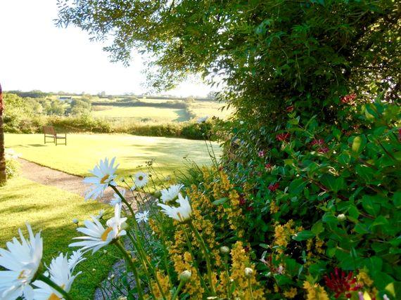 Saffi's Cottage Image 25