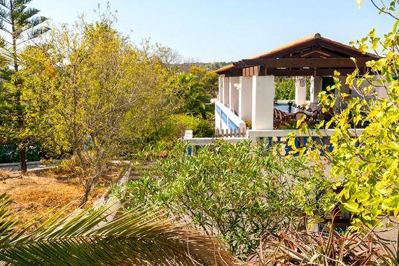 Quinta das Achadas - Mimosa Image 4