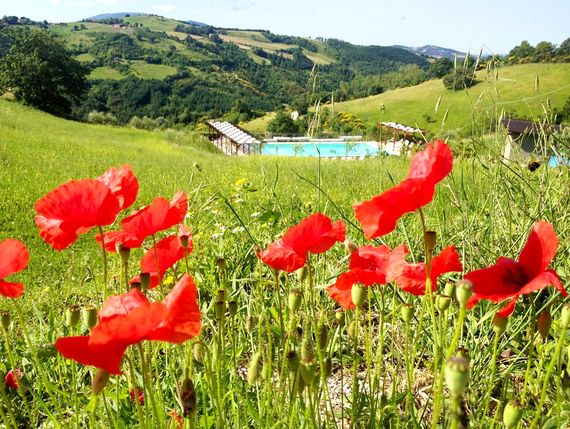 The stunning pool with slide and heated splash pool