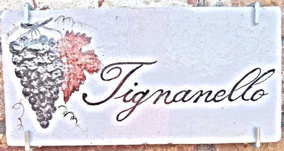 Sunflower Springs - Tignanello Image 13