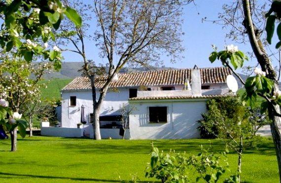 Finca Retama - Apartment Image 10