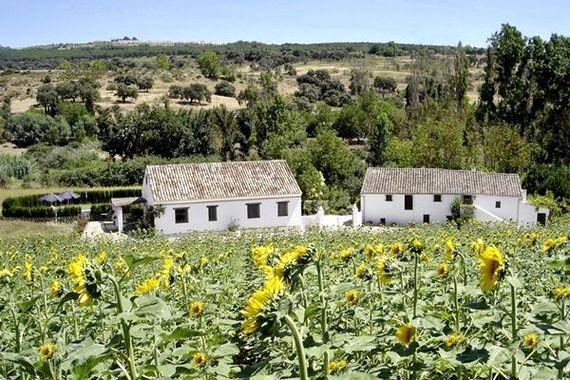 Finca Retama - Casa Abuela Image 4