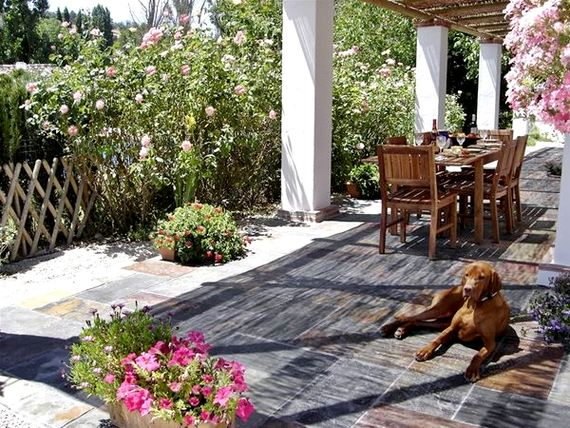 Finca Retama - Casa Abuela Image 6