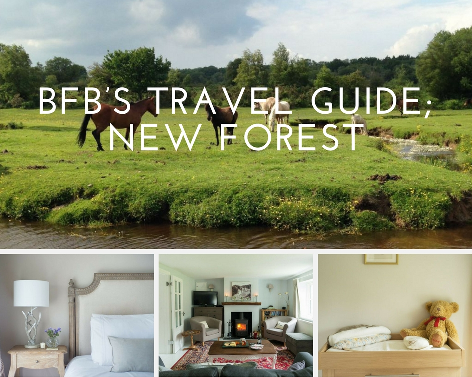 The New Forest With Kids Things To Do And Places To Go