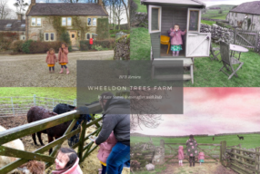 A Bolthole Review – Wheeldon Trees Farm